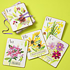 The Wall Flowers Card Set