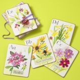 The Wall Flowers Wall Card Set