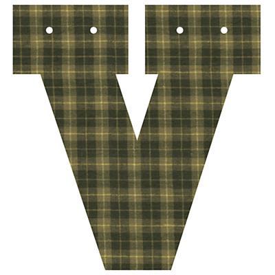 Varsity Letter V