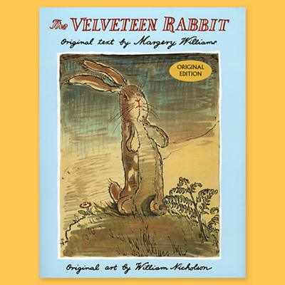 3501061_VelveteenRabbitBook_07E