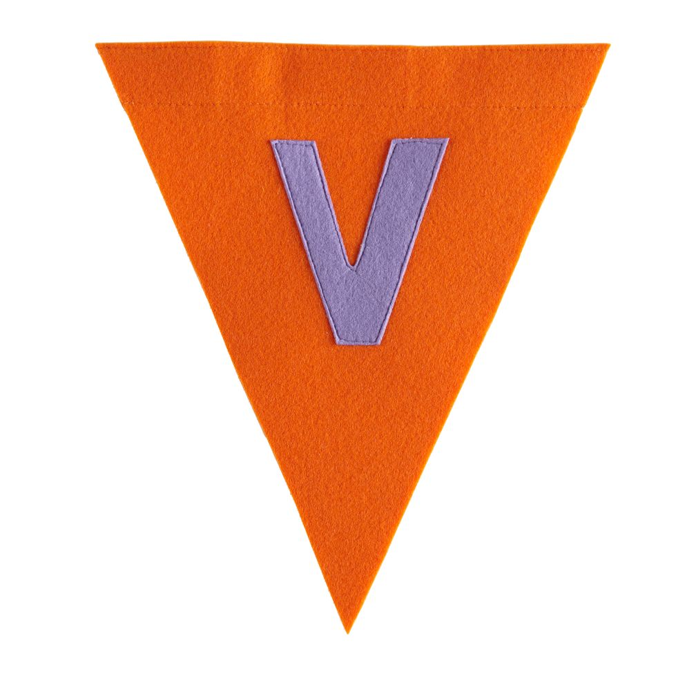 V Print Neatly Pennant Flag (Girl)