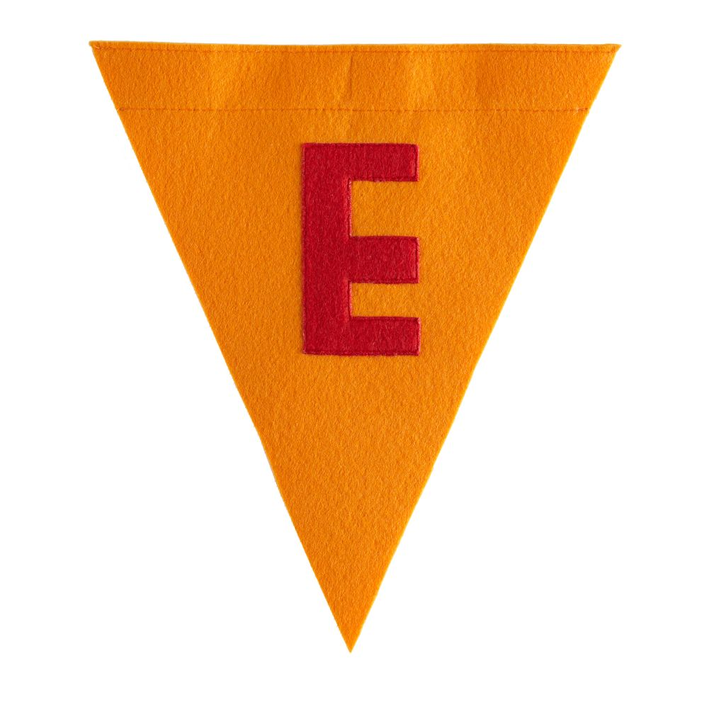 E Print Neatly Pennant Flag (Boy)
