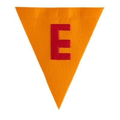 E Print Neatly Pennant Flag (Boy)