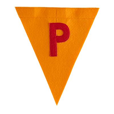 P Print Neatly Pennant Flag (Boy)