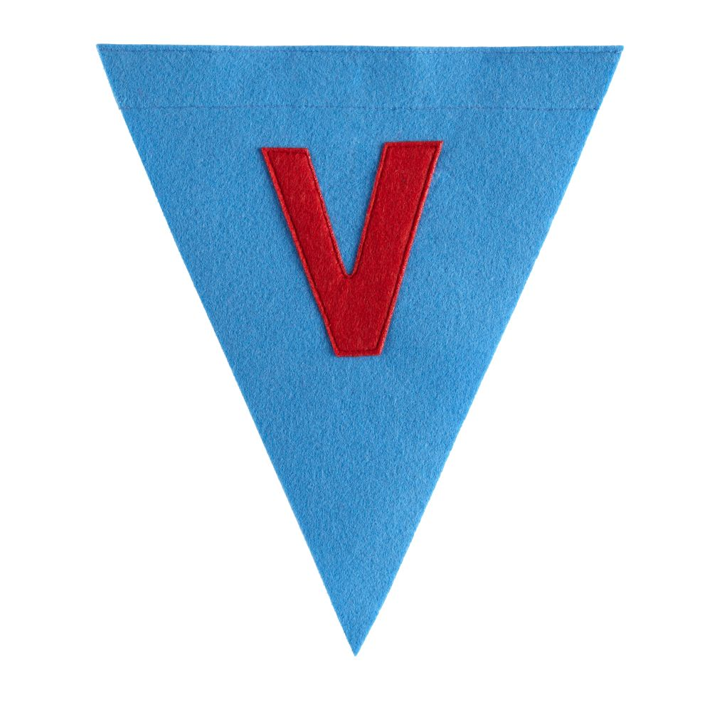 V Print Neatly Pennant Flag (Boy)
