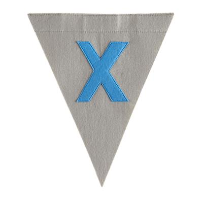 X Print Neatly Pennant Flag (Boy)