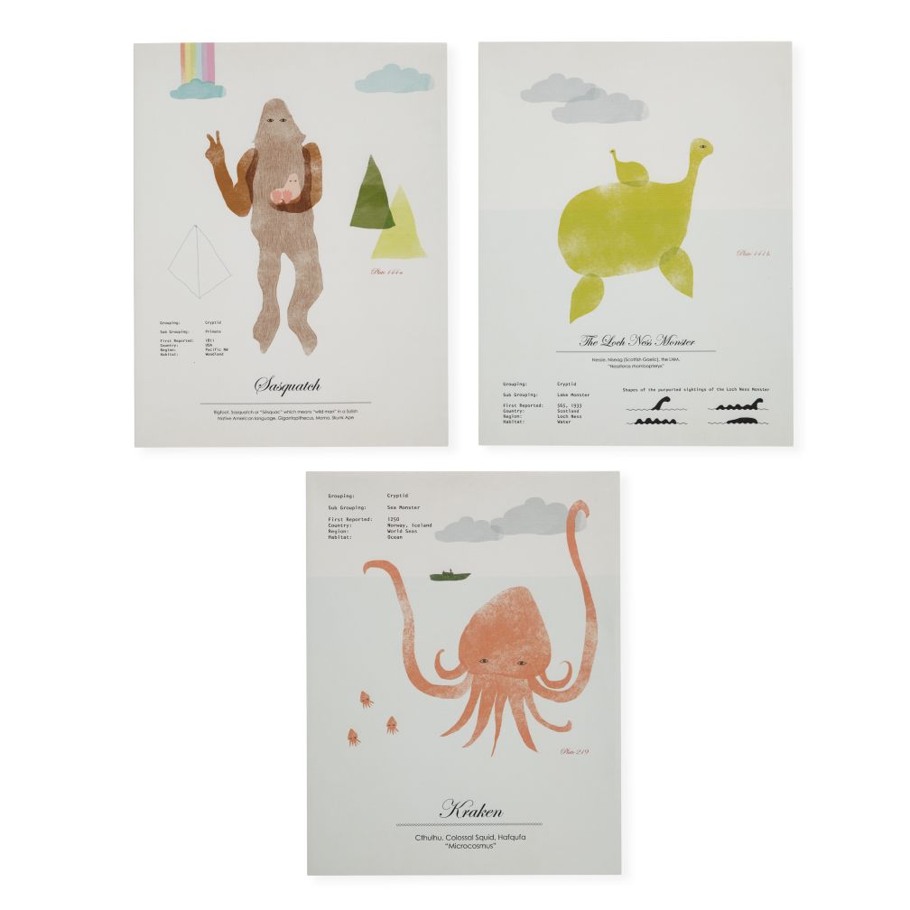 Set of 3 Rare Sightings Wall Art