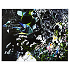 Secret Garden Wall ArtUnframed Nod Institute of Art Print