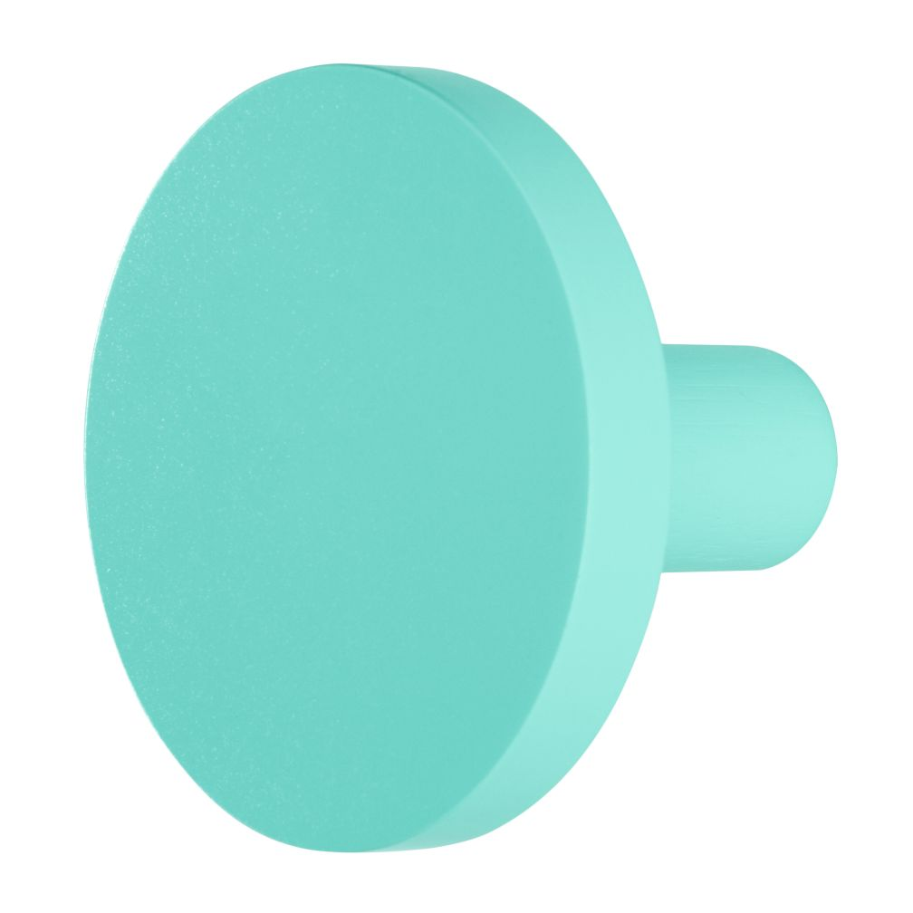 Can&#39;t Miss Wall Knob (Aqua)