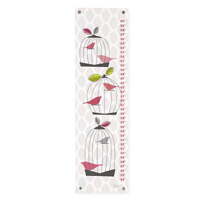 Birdcage Growth Chart