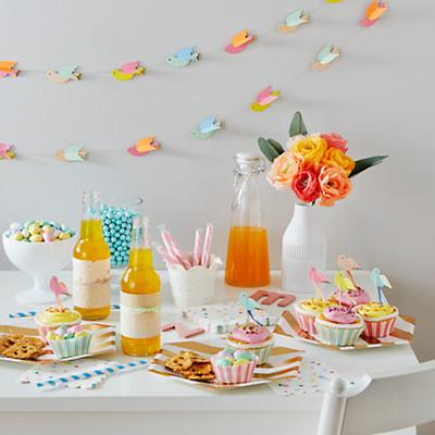 Toot Sweet Pretty Birdies Party Collection