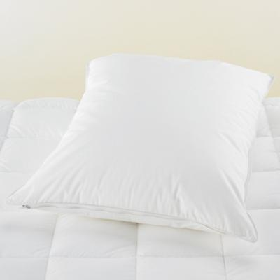 PillowCover_Cotton