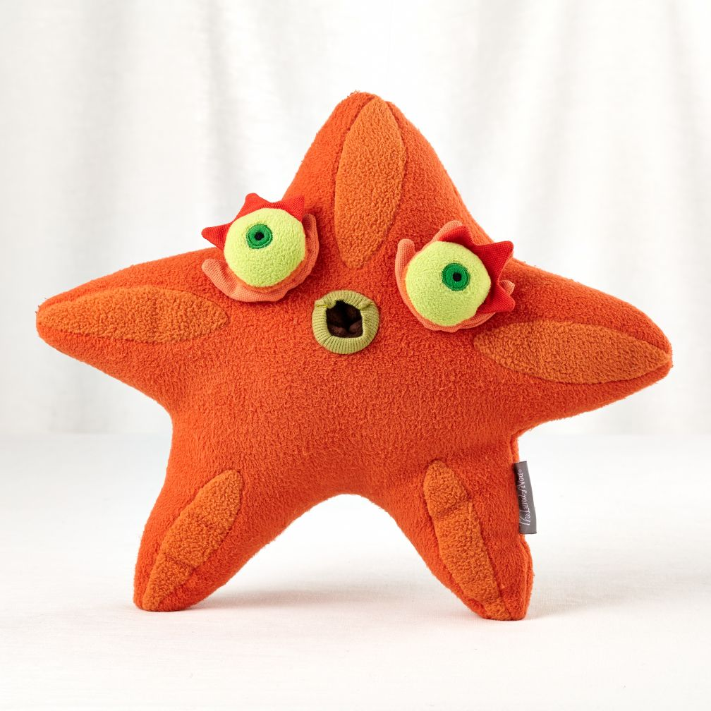 Some Things Fishy (Big Starfish)