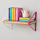 Pink Tricolor Metal Wall Shelf