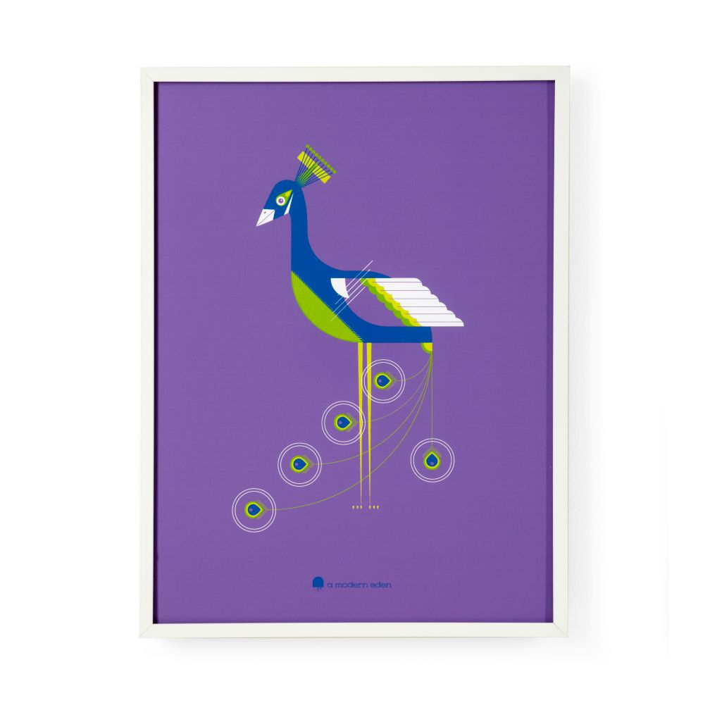 Modern Menagerie Framed Wall Art (Peacock)