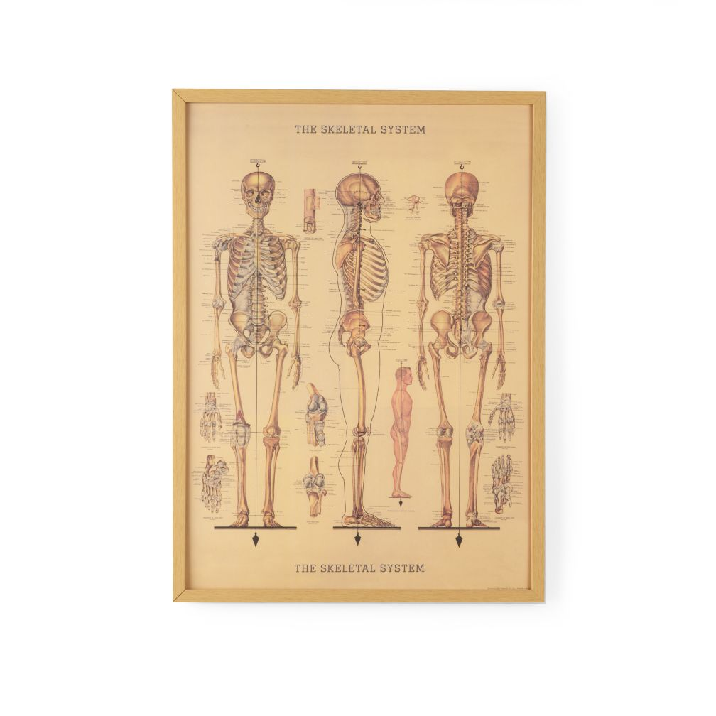 Bare Bones Framed Wall Art