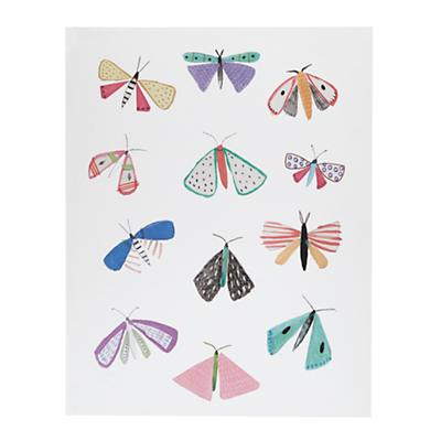 Wall_Art_NIA_Moths_UF_213662_LL